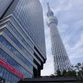 Photos: s8271_東京ソラマチ