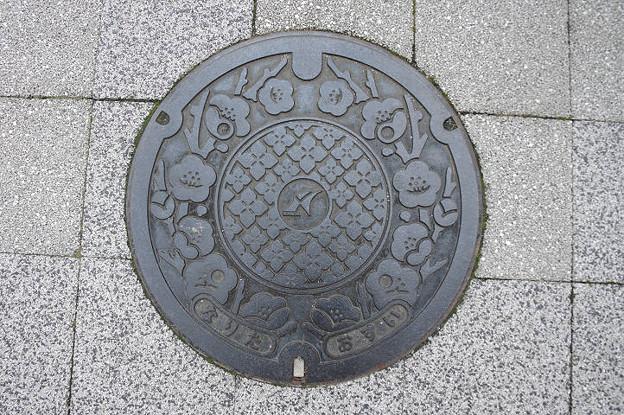 s8561_成田市マンホール_なりた_おすい