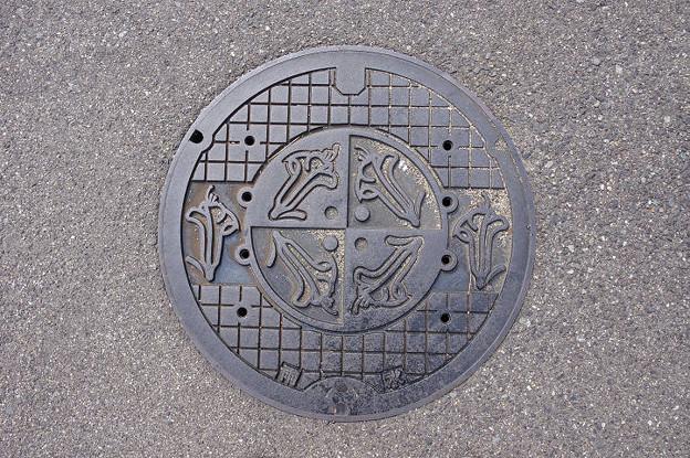 s9219_芦屋市マンホール_雨水