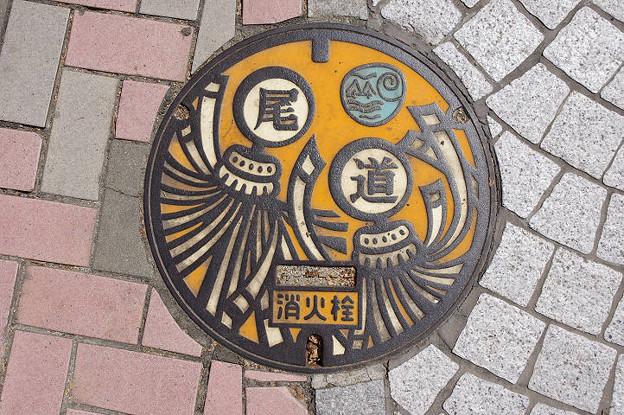 s4481_尾道市マンホール_消火栓