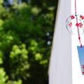 Photos: 夏の軒先