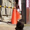 写真: 黒猫と赤コーン