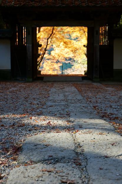 秋の向こうへ