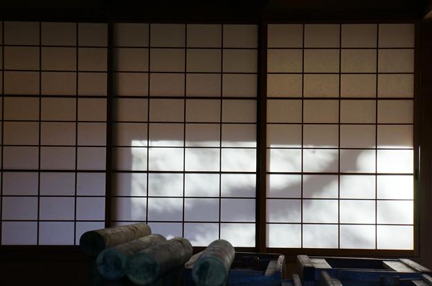 鶴がハタ織りしそう