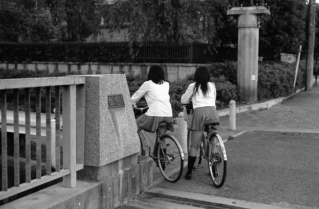 自転車と女子高生