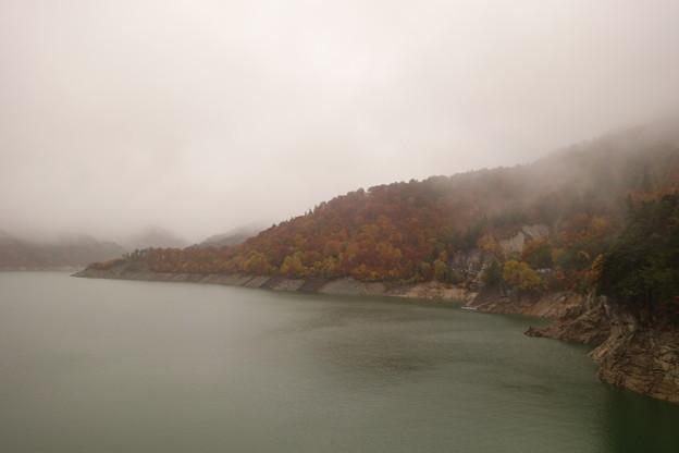 霧にむせぶ紅葉