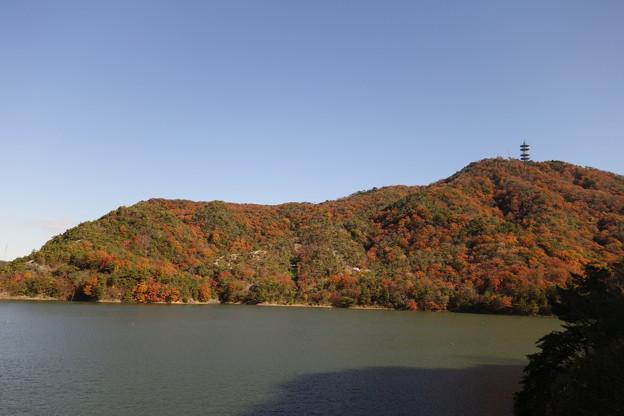 金仙寺湖と畑山