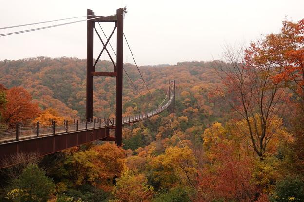 吊り橋280m高さ50m