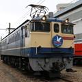 Photos: EF65 2139(国鉄色復活HM)