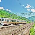 写真: 新緑列車
