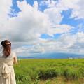 Photos: 高原の夏