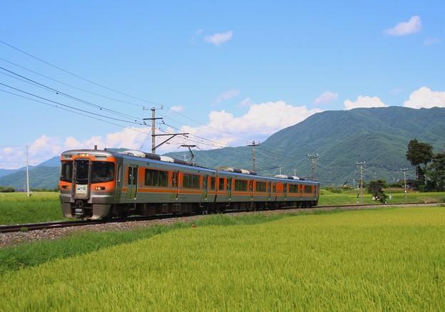 飯田線80周年アルプス号