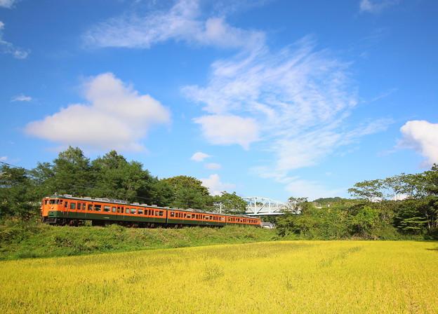 しなの鉄道115系(復刻版湘南色)