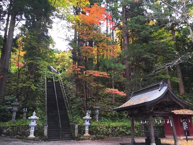 戸隠神社#1