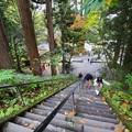 Photos: 戸隠神社#2