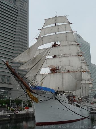 120602-旧日本丸 (14)