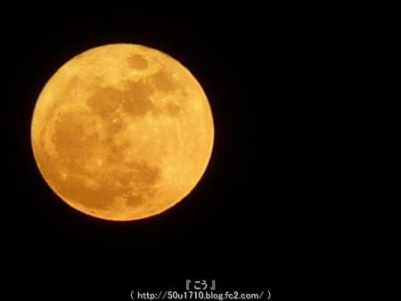 150105-お月さん (21)