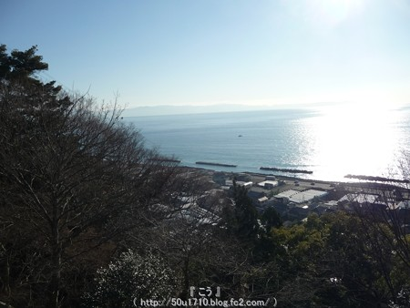 150108-久能山東照宮 参道 (52)