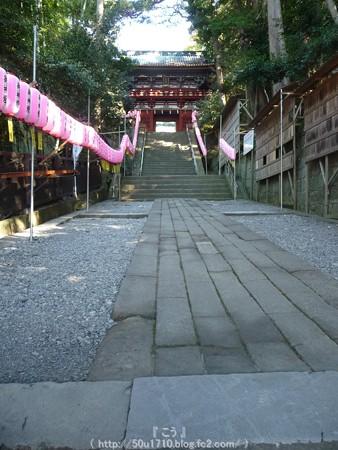 150108-久能山東照宮 (1)