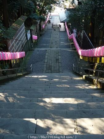 150109-久能山東照宮 (9)