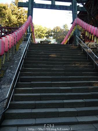 150109-久能山東照宮 (20)