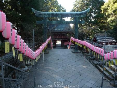150109-久能山東照宮 (84)