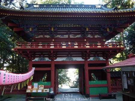 150109-久能山東照宮 (92)