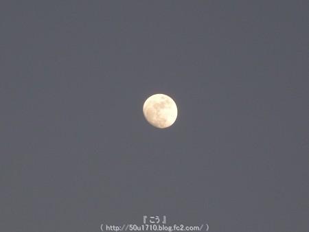 150201-お月さん (2)