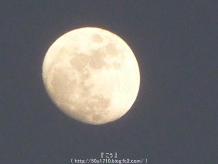 150201-お月さん (6)