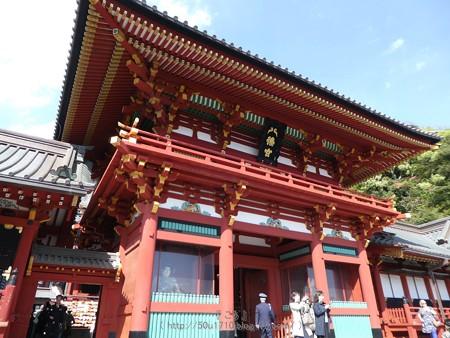 170413-鶴岡八幡宮 (15)