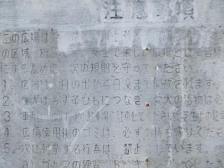 170414-上瀬谷原っぱ (44)