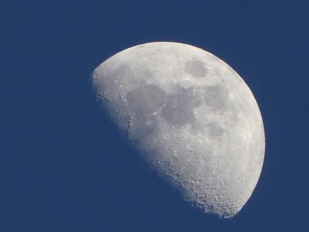 170504-お月さん (5)
