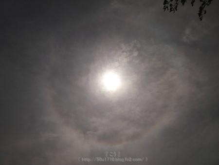 170603-ハロ (2)