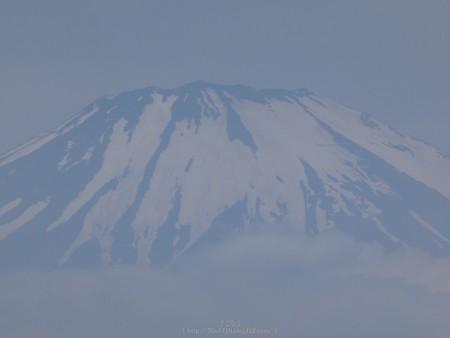 170617-富士山(松田町ハーブガーデン) (9)
