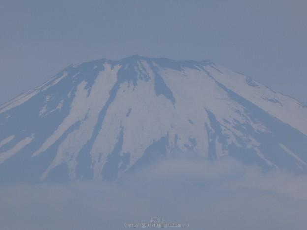 写真: 170617-富士山(松田町ハーブガーデン) (9)