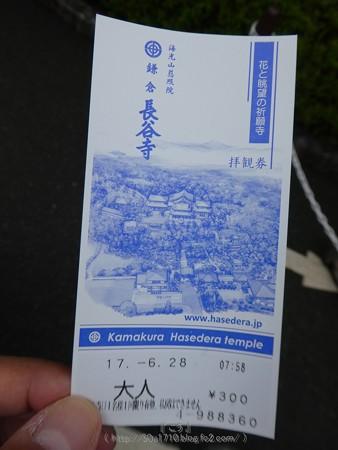 170628-鎌倉 長谷観音 (2)