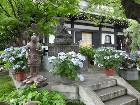 170628-鎌倉 長谷観音 (181)