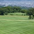 写真: 170809-日本平 (71)