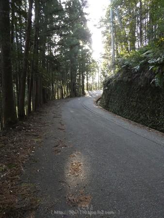 160325-熊野古道 小辺路 (4)