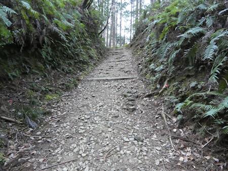 160325-熊野古道 小辺路 (24)