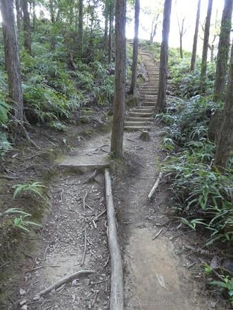 160325-熊野古道 小辺路 (33)