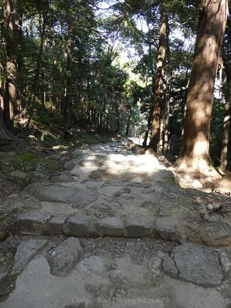 160324-神倉神社 (42)
