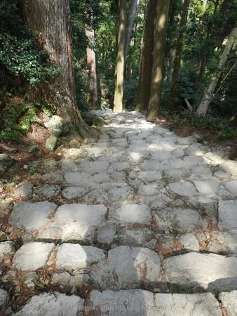 160324-熊野那智大社 熊野古道 (5)