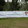 170916-はちおうじフェア 球場 (1)