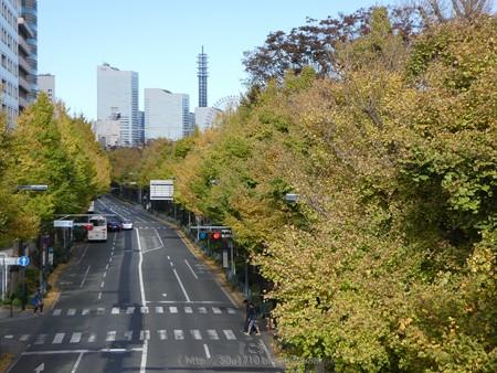 171112-山下公園通り (9)