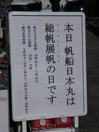 171112-日本丸 総帆展帆 (1)