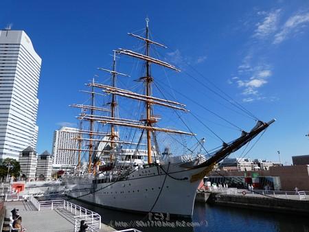 171112-日本丸 総帆展帆 (7)