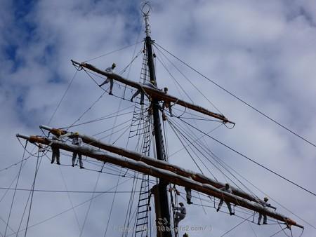 171112-日本丸 総帆展帆 (20)