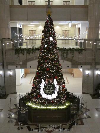 171129-ランドマークタワー クリスマスツリー (5)