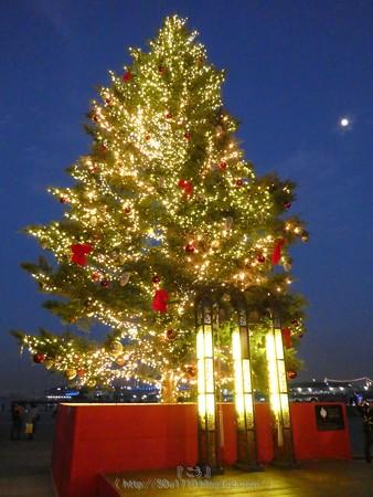 171129-赤レンガ クリスマスマーケット (102)